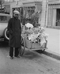 Flower Cart, Washington, DC, 1931