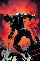 Black Panther No. 1 Cover Art by Larry Stroman
