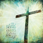 For God so Loved the World by Sally Barlow